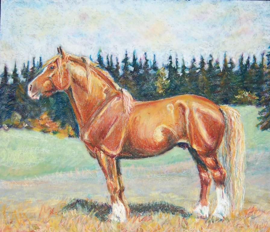 horseexplore Nordishingst pastell Anette Kynman 1991